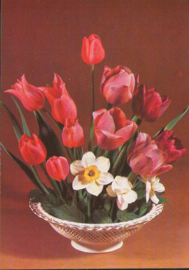 """Apsveikuma pastkarte """"Ziedi"""" 1983. gada Sarkanas tulpes un narcissi """"Planeta"""" 10,5x15 cm"""