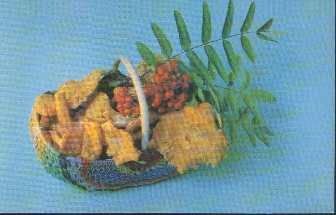 """Apsveikuma pastkarte """"Ziedi"""" Kompozīcija ar gailenēm un pīlādžiem 1983. gada """"Planeta"""" 14x9 cm"""