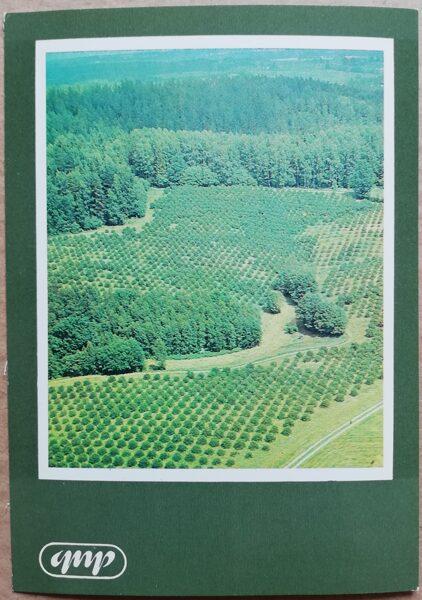 GNP Ainava pie Kārļiem 1981. gads Latvija foto 10,5x15 cm.