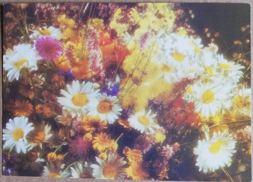 """Apsveikuma pastkarte """"Ziedi"""" Savvaļas ziedi 1989. gada """"Avots"""" 15x10,5 cm"""