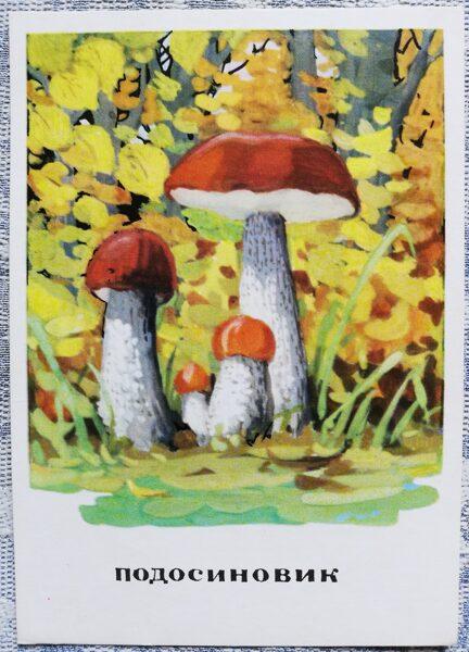 """""""Parastā apšubeka"""" pastkaršu sērija """"Sēnes"""" 1971 10,5x15 cm"""