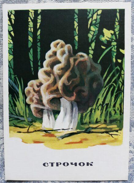 """""""Bisītes"""" pastkaršu sērija """"Sēnes"""" 1971 10,5x15 cm"""