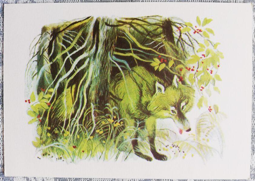 """Bērnu PSRS pastkarte Vilks """"Neraudi, mušmire"""" 1979 15x10,5 cm Советский художник"""