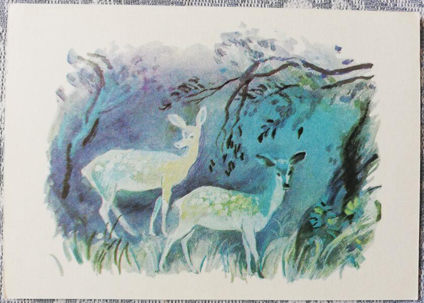 """Bērnu PSRS pastkarte Dambriedis """"Neraudi, mušmire"""" 1979. gada 15x10,5 cm padomju mākslinieks"""