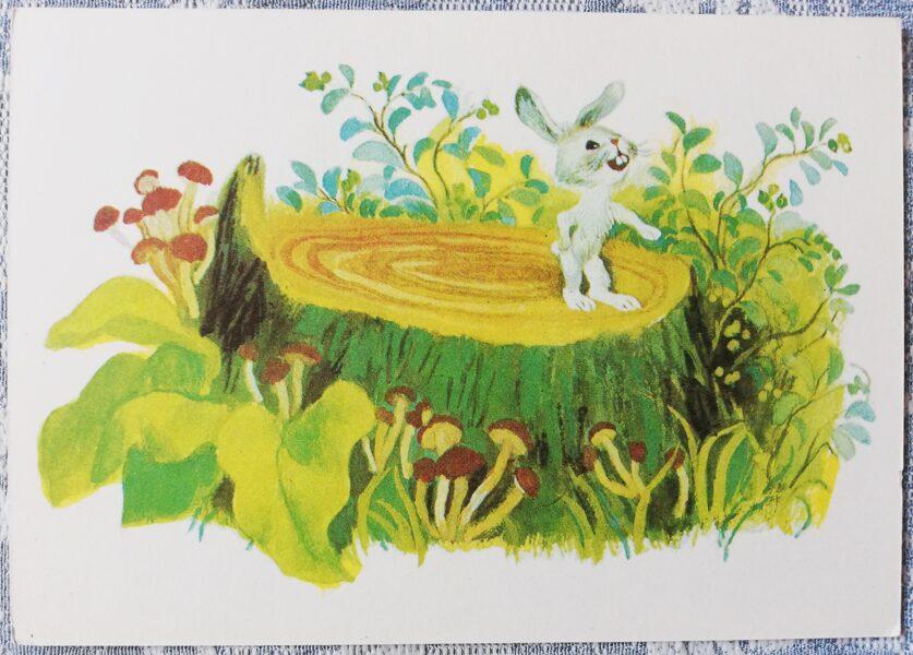 """Bērnu PSRS pastkarte """"Zaķis uz koka celma ar sēnēm"""" 1979. gads 15x10,5 cm padomju mākslinieks"""