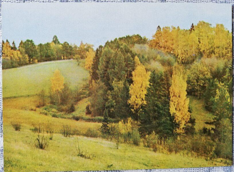 Cesis 1965 Meyer ravine 14x10 cm postcard