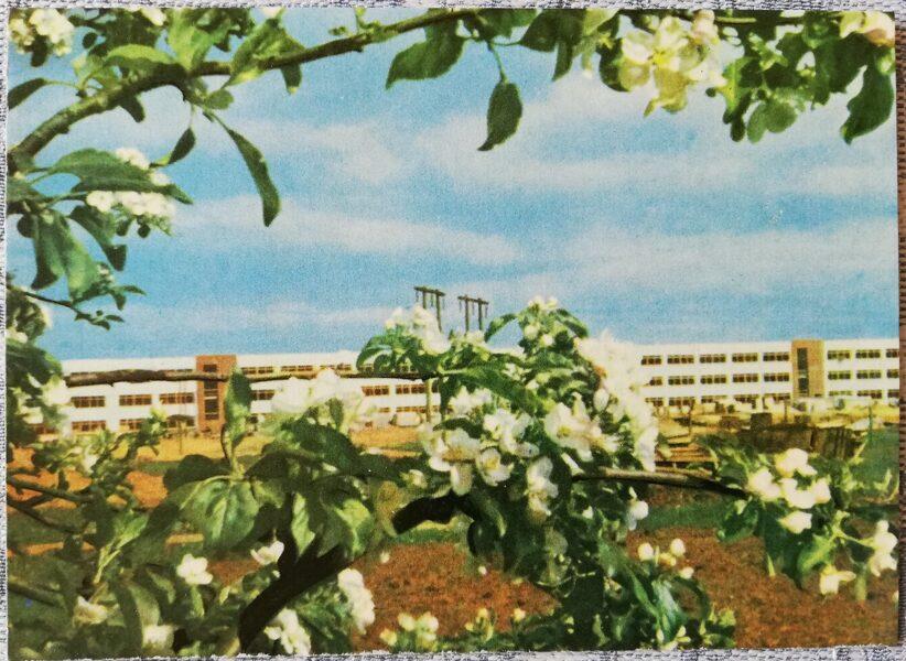 Ogre 1966 New building of a knitwear factory 14x10 cm postcard