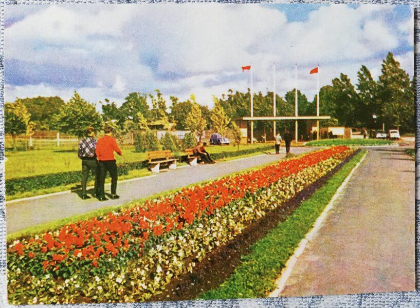 Ventspils 1965 Stadium 14x10 cm postcard