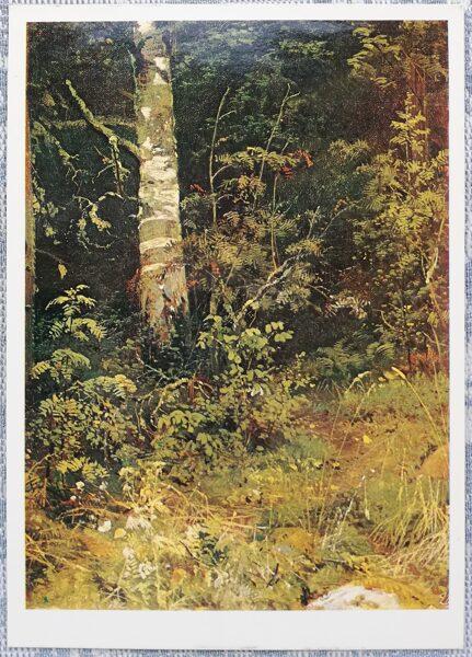 """Ivans Šiškins 1984 """"Bērzs un pīlādži. Etīde. """" 10,5x15 cm"""
