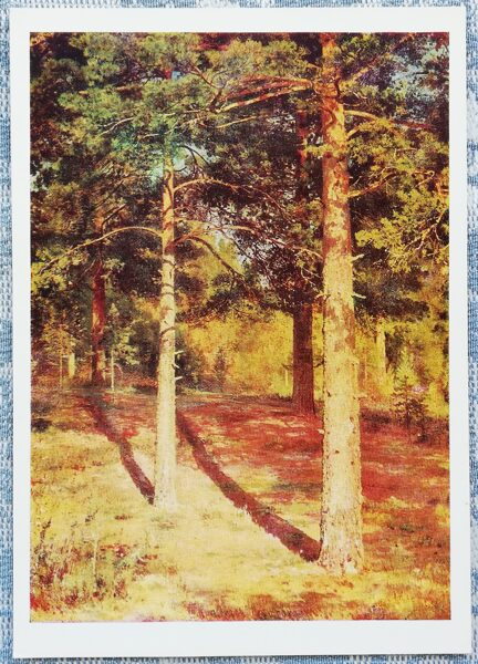 """Ivans Šiškins 1979 """"Saules izgaismotās priedes"""" 10,5x15 cm"""