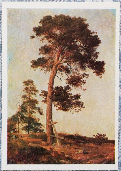 """Ivans Šiškins 1979 """"Priede uz Valaamas"""" 10,5x15 cm"""