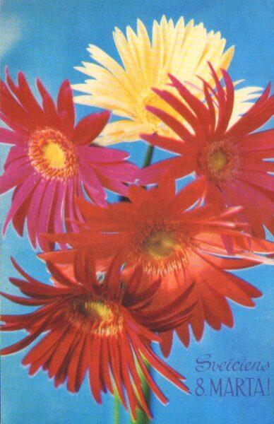 """Apsveikuma pastkarte """"Sveiciens 8. martā"""" Gerberas 1976. gada """"Liesma"""" 9x14 cm"""