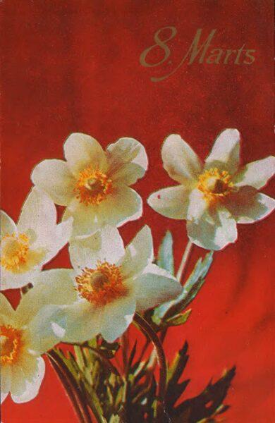 """Apsveikuma pastkarte """"8. marts"""" Narcises 1978. gada """"Liesma"""" 9x14 cm"""