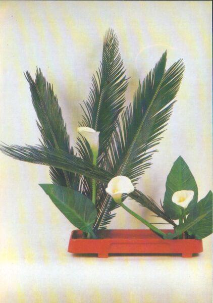 "Apsveikuma pastkarte ""Ziedi"" Kallas 1983. gada ""Planeta"" 10,5x15 cm"